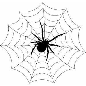 spiweb