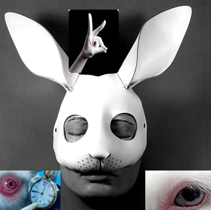 EL CONEJO TE MUESTRA EL CAMINO HACIA SATÁN - Página 6 Rabbit